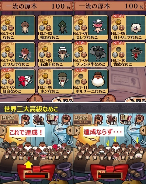 nameko_DX-ELT-11.jpg